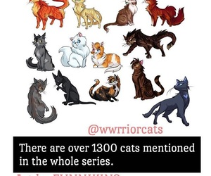 books, cats, and fancy image