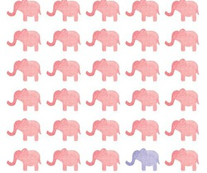 elephant, pink, and wallpaper image