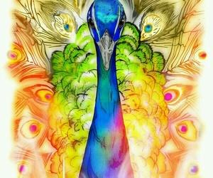 peacock, bird, and art image