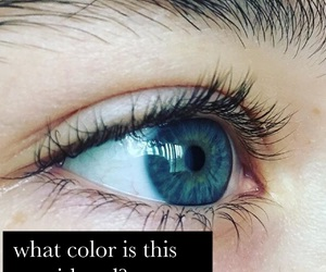 ?, color, and eyebrows image