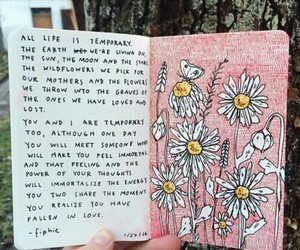 flowers, quotes, and art image