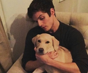 daniel sharman, teen wolf, and dog image