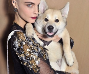 cara delevingne, dog, and model image