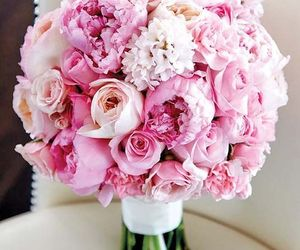 girls, pink, and roses image