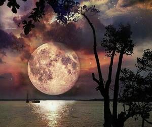 amazing, beach, and moon image