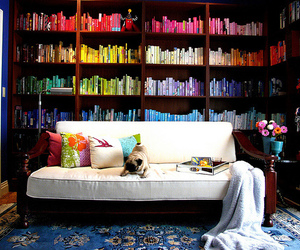 colores, libros, and sofa image