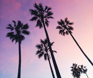 california, inspo, and la image