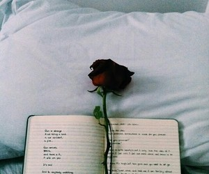 book and rose image