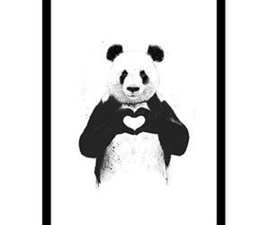 panda, heart, and animal image