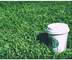 coffee, cup, and grass image