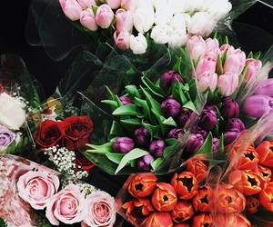colorful, floral, and flower image