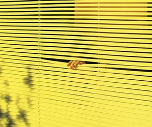 art, yellow, and blinds image