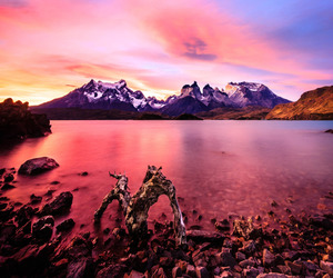 lake, torres del paine, and nacional image