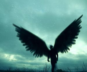 dark and wings image