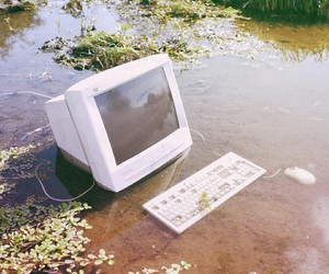 computer, plants, and aesthetic image