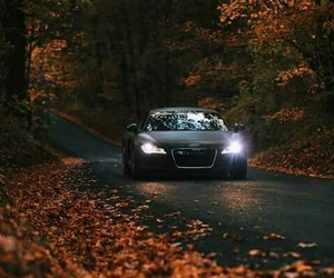 audi, cool, and nature image