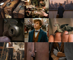 fantastic beasts, fbawtft, and newt scamander image