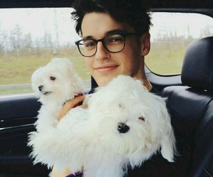 cute, boy, and dog image