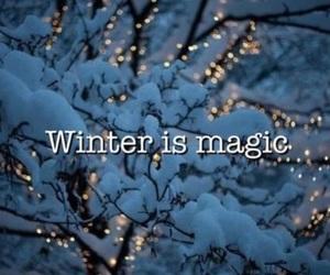 lights, magic, and snow image