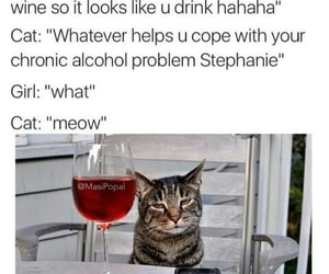 funny, cat, and wine image