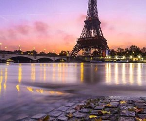 eiffel tower, leaves, and paris image