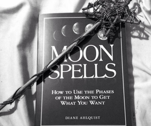 witch, moon, and witchery image