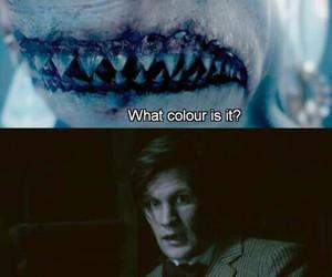 11, shark, and doctor who image