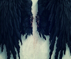 angel, dean, and spn image