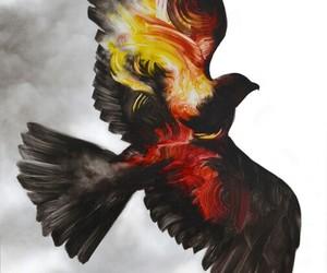 bird, art, and fire image