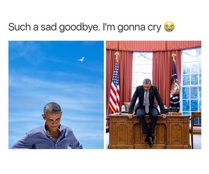 accurate, barack obama, and black and white image
