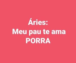 ama, pau, and zodíaco image