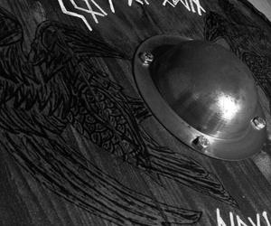 viking and norse shield image