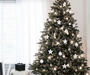 christmas, christmas tree, and holidays image