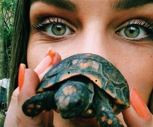 girl, turtle, and summer image