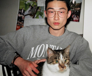 cat and asian image