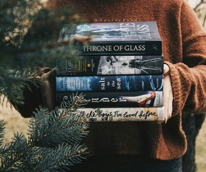 book, reading, and throne of glass image
