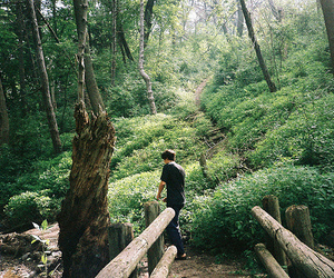 boy, nature, and green image