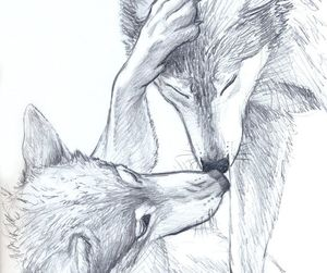 sketch, wolf, and drawing image