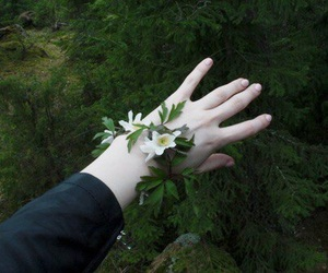 flowers, pale, and hand image