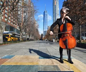 cello, music, and vintage image
