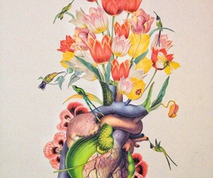 heart, flowers, and nature image