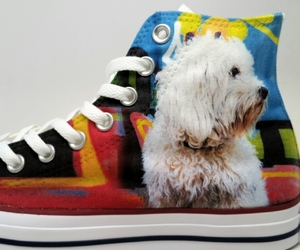 converse, custom, and dogs image