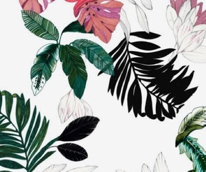 wallpaper, art, and tropical image