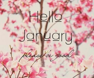 flowers, hello, and january image