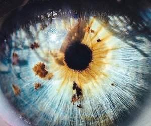 photography, eye, and blue image