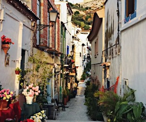 flowers, Houses, and plants image