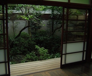 green, nature, and japan image