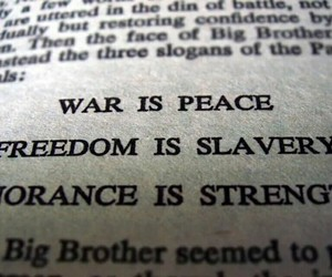 quote, book, and freedom image