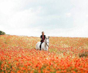 field, flowers, and horse image