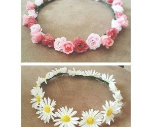 daisy, flower, and rose image